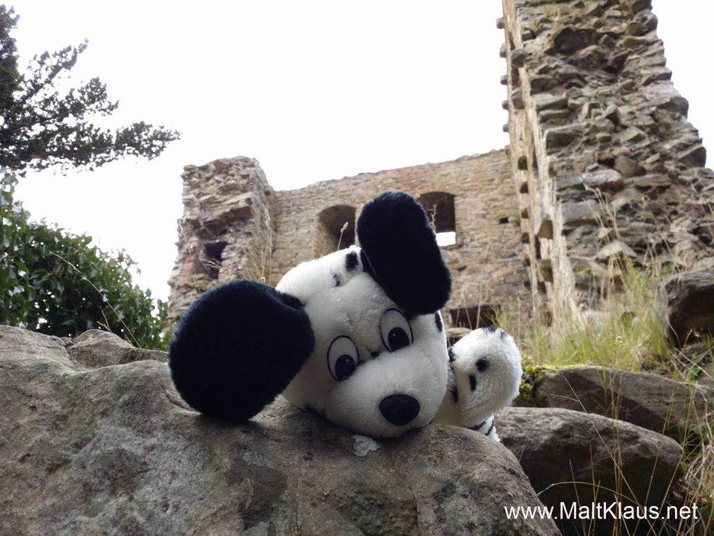 Sniffy sniffing around the castle ruin