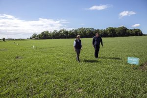 Production Director Allan Logan and Head Distiller Adam Hannett inspect trial plots planted on Islay in 2016.(Picture: Bruichladdich)