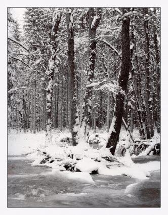 Winter am Kösslbach